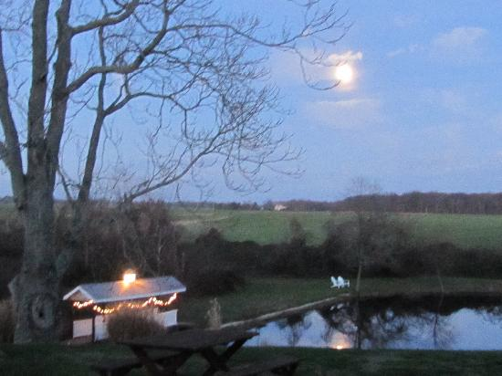 The Inn at Mitchell House: Enjoy an evening stroll around our pond