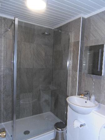 Bowes Incline Hotel: Bathroom