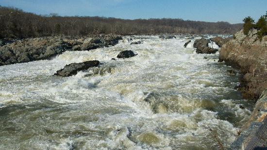 Maryland: Great Falls