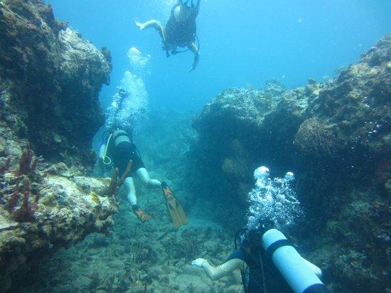 Nautica Plongee Caraibes