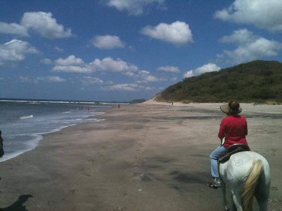 Soma Surf Resort: Horseback Riding