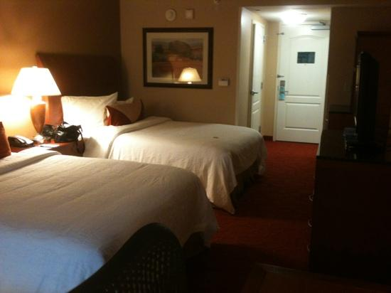 Hilton Garden Inn Chicago O'Hare Airport: double bed room