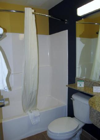 Microtel Inn & Suites by Wyndham Keyser : Bathroom seperate from the dressing area affords privacy.