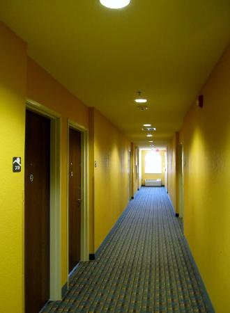 Microtel Inn & Suites by Wyndham Keyser : The yellow hallways are not as scary in person.