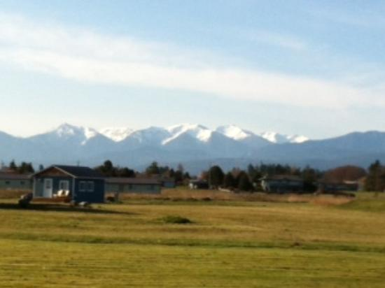 Juan de Fuca Cottages: Olympic Mtns from Twin View