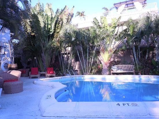 لا كاسا ديل مار: Pool at Casa del Mar