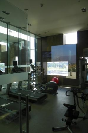Hilton Garden Inn Santiago Airport: gym space has some cardio equipment