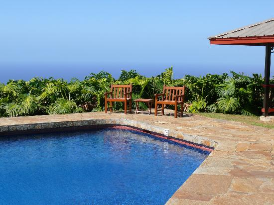 Holualoa Inn: The outdoor swimming pool