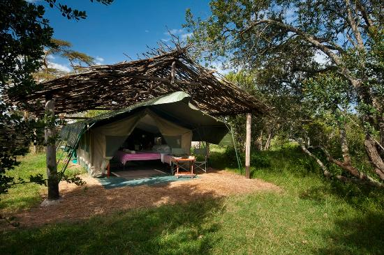 Ol Pejeta Bush Camp: Back 2 Basics - Yes Please!