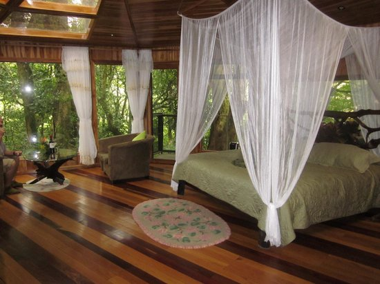 Hidden Canopy Treehouses Boutique Hotel: our treehouse Glades