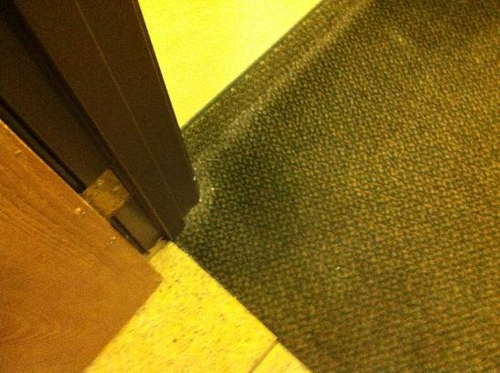 Rio Rancho, NM: This was carpet in plain site going into bathroom