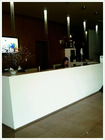 Hotel Dras: Reception