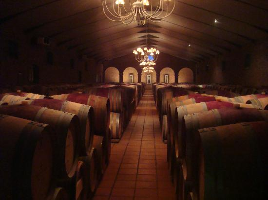 The Last Word Franschhoek: The wine Cathedral