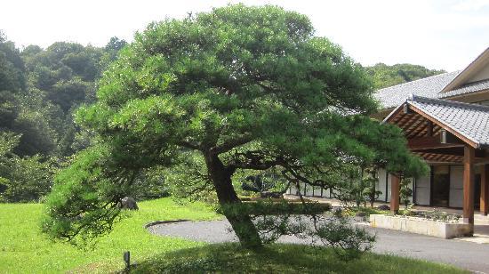Nakatsugawa, Giappone: 緑が多く、落ち着いた雰囲気です