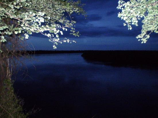 Drotsky's Cabins: river Okavango