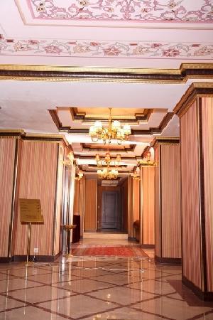 Albatros Premier Hotel: lobby