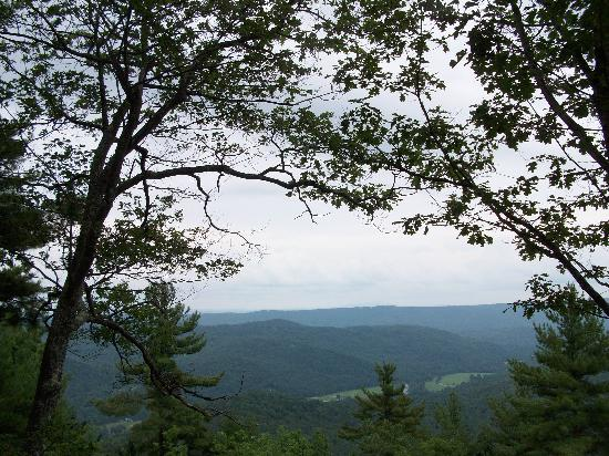 Townshend State Park: The view from Bald Mt