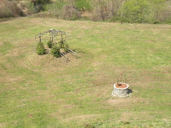 La Palombara Agriturismo: Uno scorcio del giardino