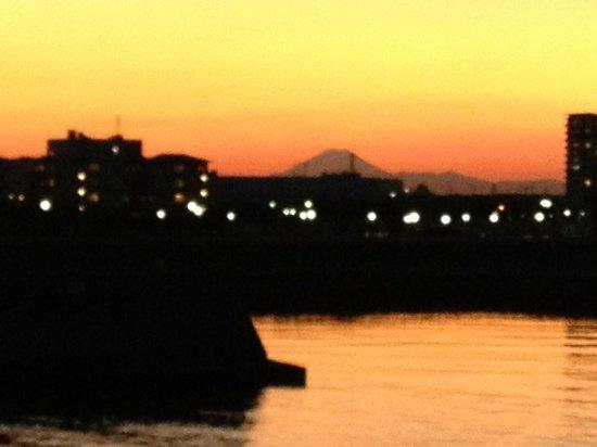 Urayasu Comprehensive Park: 総合公園からの夕景  富士山