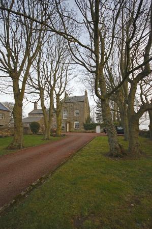 Glororum Farmhouse : The front drive leading to the farmhouse