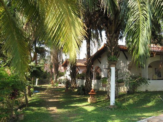 Secret Garden Chiang Mai: in the secret garden