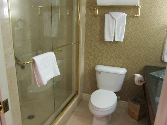 Hotel Le Soleil: bathroom
