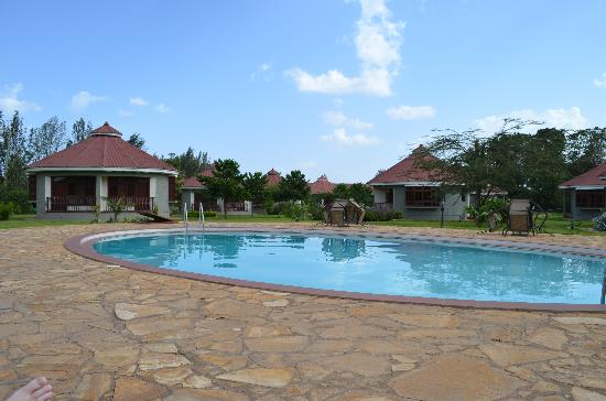 Arusha Planet Lodge: Pool