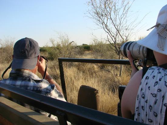 Kalahari Anib Lodge: foto hunting in the logde animal resort