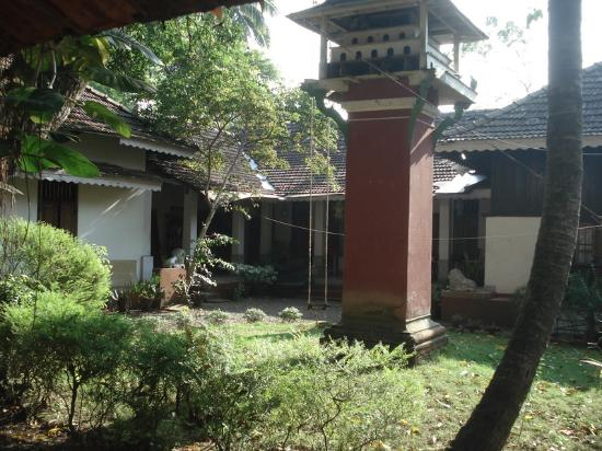 Cherukara Nest: View of Backyard