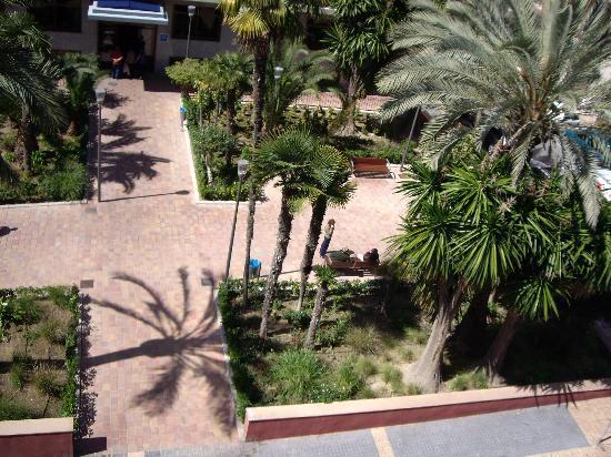 Hotel Oasis Plaza: Vistas desde mi habitación. Una plaza tranquila
