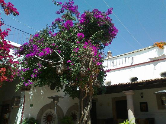 Hotel Villa del Villar: estancia2