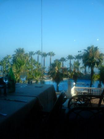 Marbella Playa Hotel: Blick vom Speisesaal auf den Pool