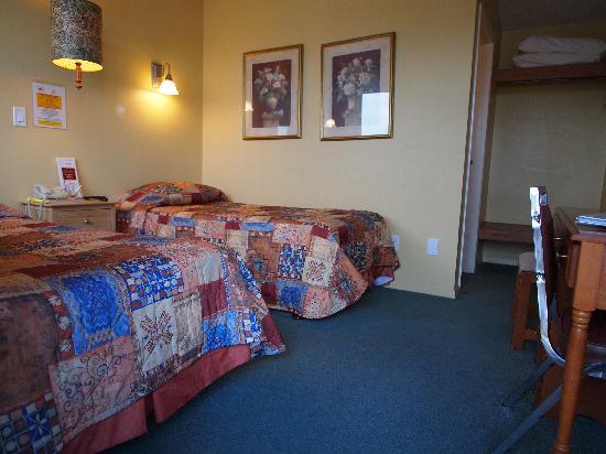West Coast Motel on the Harbour : Euro Sleeper Twin