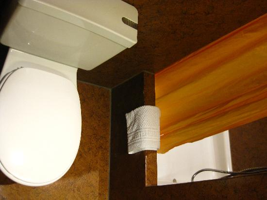 Hotel Waldhorn: Mini baño