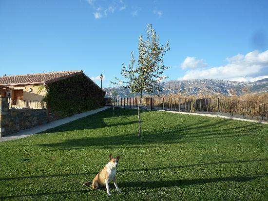 Alueza, Spain: Admitimos a tu mascota