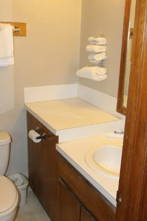 Oak Hill Inn & Suites: This place needs to be gutted