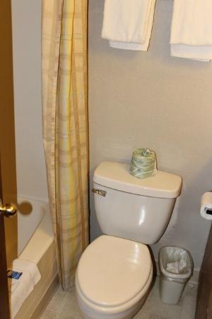 Oak Hill Inn & Suites: Very small bathroom