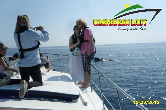Caribbean Lady Private Tour: Behind you !