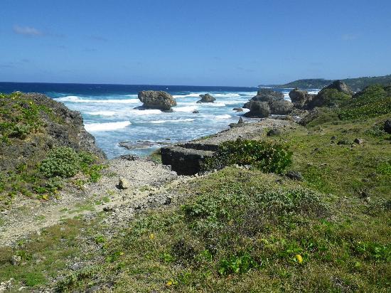 Lush Life Nature Resort: Hiking the East Coast Railway Trail