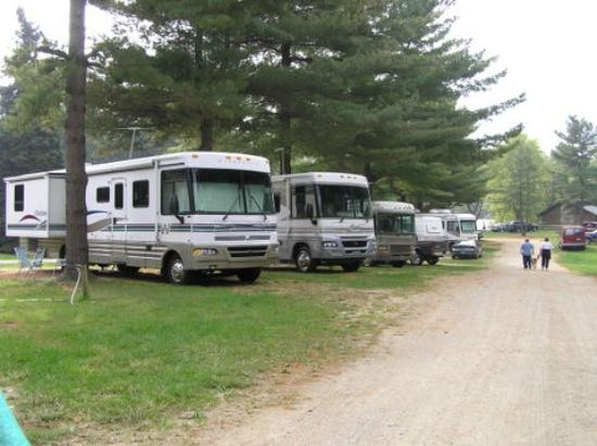 Eby's Pines RV Park & Campground: typical campsites