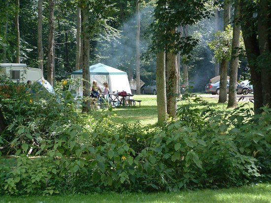 Eby's Pines Campground: primitive camping area