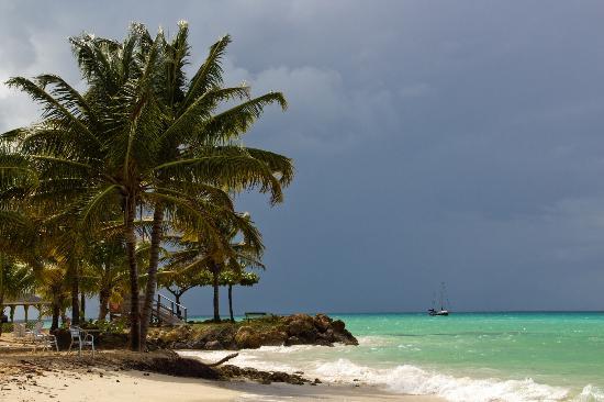 Sea Shells Vacation Villas照片