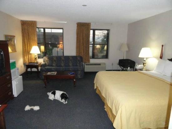 Quality Inn Murfreesboro : Couch, tables & lamps