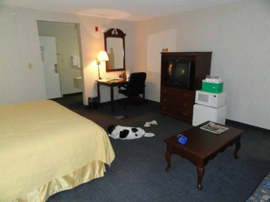 "Quality Inn Murfreesboro : Our spacious room, complete with our dog ""Spot"""