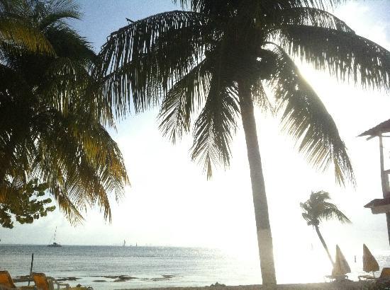 Mar y Sol : Beach