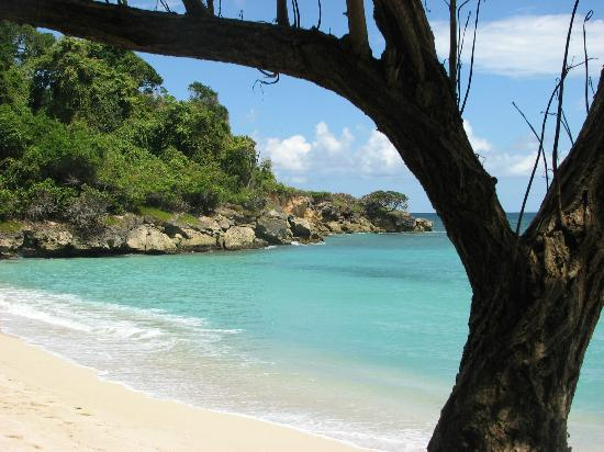 Luxury Bahia Principe Cayo Levantado Don Pablo Collection: lovely turquoise water everywhere!