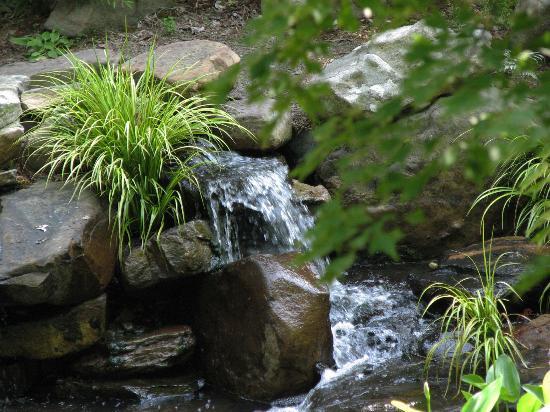 UNC Charlotte Botanical Gardens: UNCC