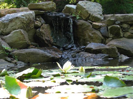 Uncc Picture Of Unc Charlotte Botanical Gardens Charlotte Tripadvisor