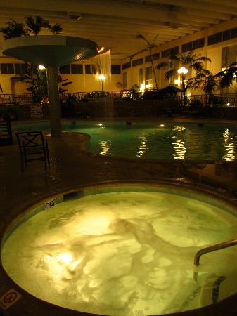 Ramada Fresno Airport: Pool 2