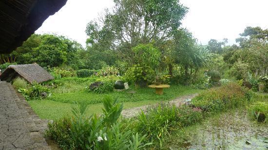 Moon Garden Tagaytay照片
